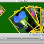Mac上でFlashアニメーションを再生する